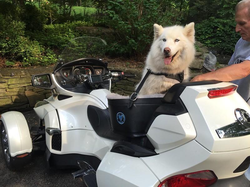 Princess's First Ride!!