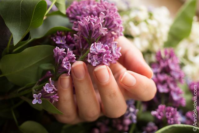 clear nails Ann Sokolova