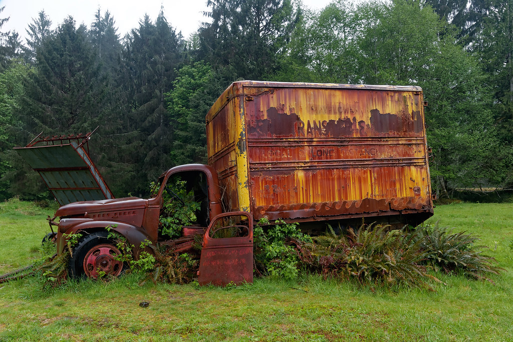 A dilapidated old moving truck has trees growing inside it at the Kestner Homestead in Olympic National Park