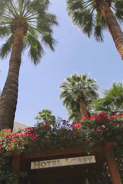 palmsprings-5