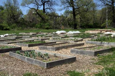 Bartram's Garden: Community Garden