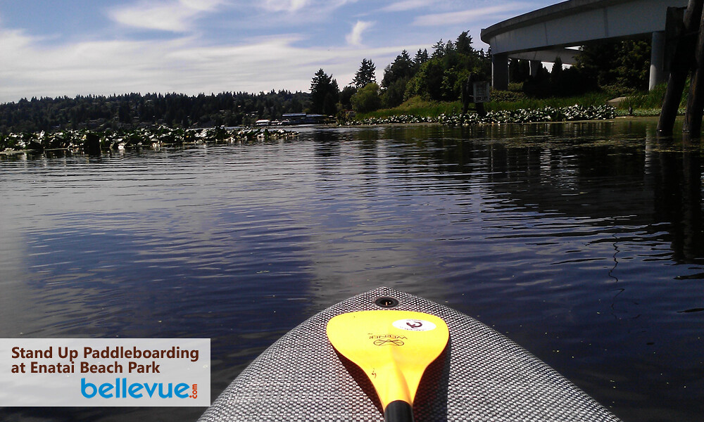 Stand-up Paddleboarding in Bellevue | Bellevue.com