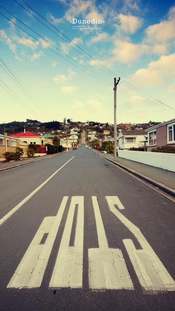 全世界最陡的街