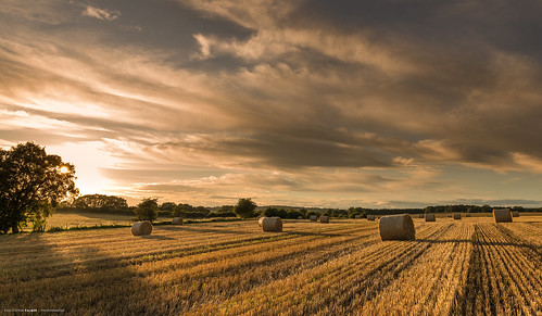 uk light sunset england sky nikon skies sundown farm farming harvest shade hay staffordshire benbo swynnerton leefilters nikkor2470f28 benbotripod leendgrad threeshiresphotographers d800e nikond800e