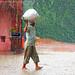 India summer monsoon rain season by jackfre 2
