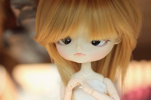 Cornelia - puki