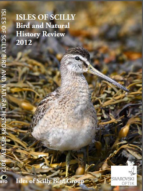 Isles Of Scilly Bird And Natural History Review