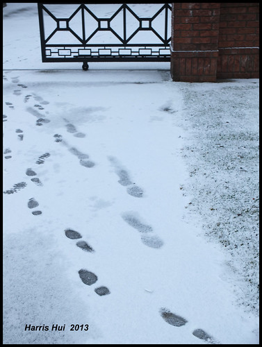 Do You Mind Leaving A Trail (On Internet Or On Snow)? - First Snow X2993e