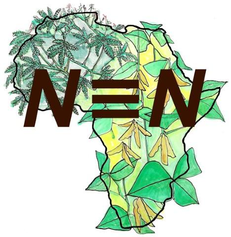 N2Africa logo