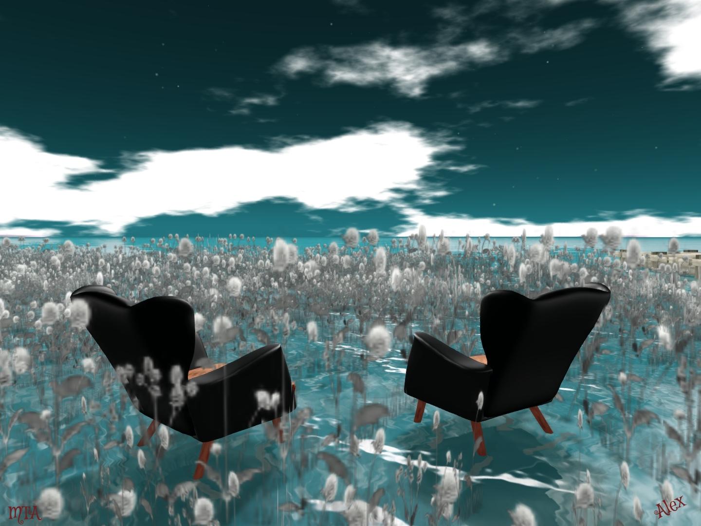 Black Kite5