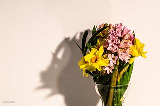 Spring Bouquet!