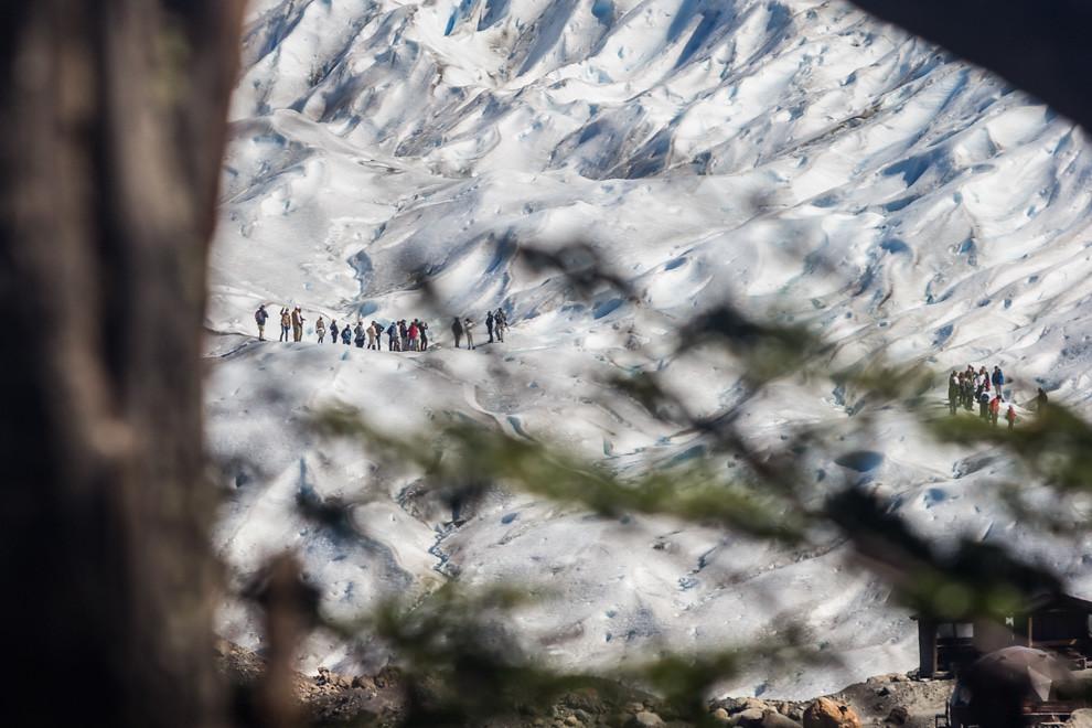 El trayecto para llegar hasta el inicio de trekking sobre el glaciar incluye un recorrido por el bosque desde donde se aprecia a lo lejos a los turistas que terminan su travesía sobre el hielo. (Tetsu Espósito).