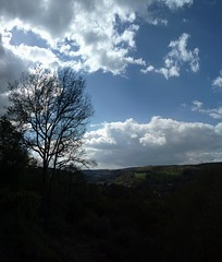 Vertical countryside panorama