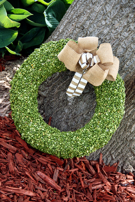 Done_Pea-Wreath-By-Tree