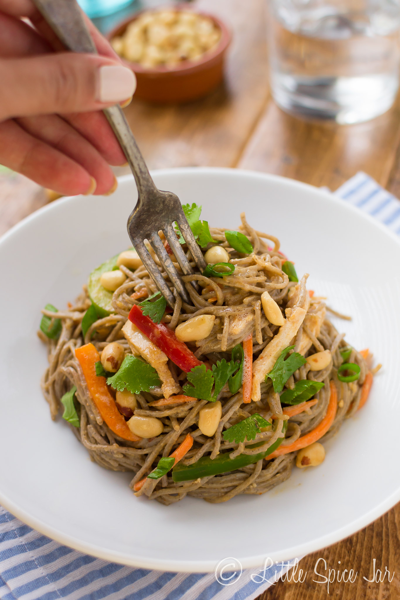 hand twirling fork in prepared peanut soba noodle salad