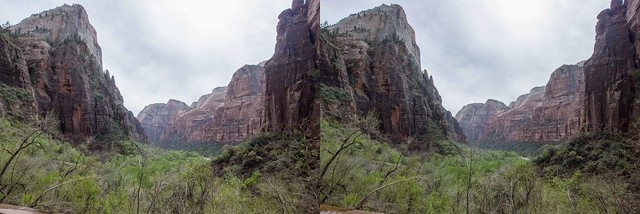 Zion National Park, 3D crosseyed view