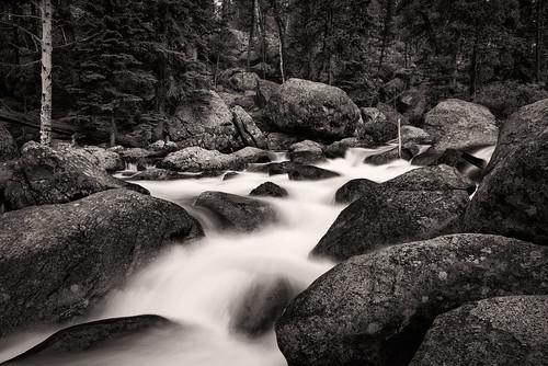 blackandwhite bw water forest nationalpark colorado rocks stream unitedstates grandlake rockymountainnationalpark