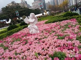 CIRCLEG 遊記 維多利亞公園 銅鑼灣 花展 2016 (43)