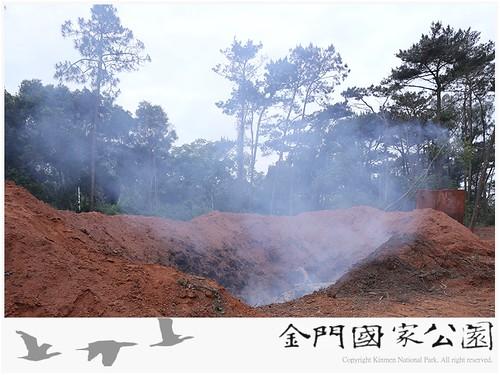 中山林染病(松材線蟲)焚燒