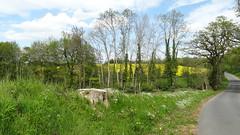 42. Maisoncelles-Pelvey - Photo of Aunay-sur-Odon