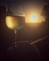 The Golden Hour . . . Join me?  #wiensfamilycellars #wine #backyard #landscape #cheers