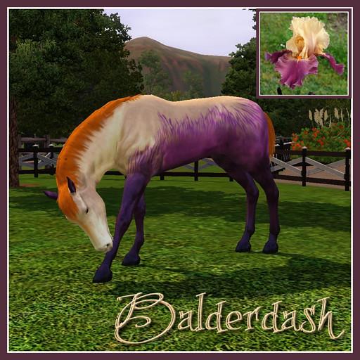 Balderdash - Inspiration