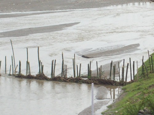 Constructing bamboo porcupines is common as a flood protection measure in Dhemaji on river Subansiri