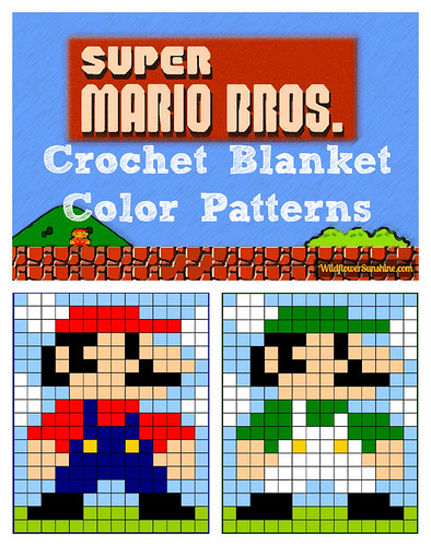 Wildflower Sunshine: Mario and Luigi Super Mario Brothers ...