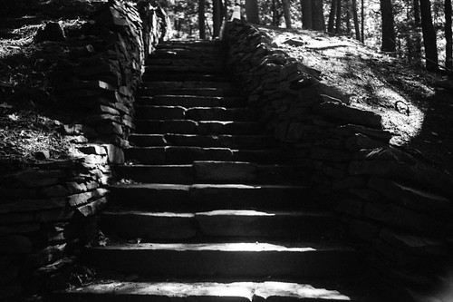 Steps @ Taughannock State Park