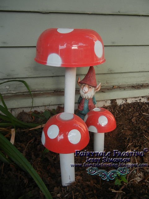 BLOG Mushrooms 3