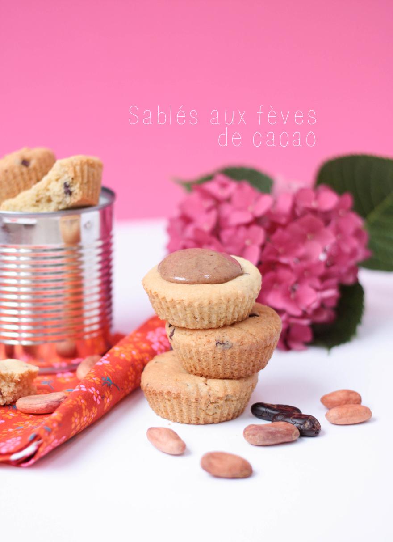 sable-feve-de-cacao06