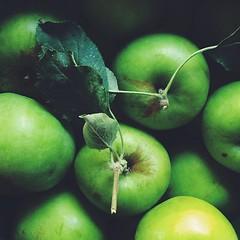 Green apples overload