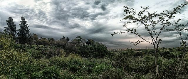 Panorama Reserva Natural Zárate 2