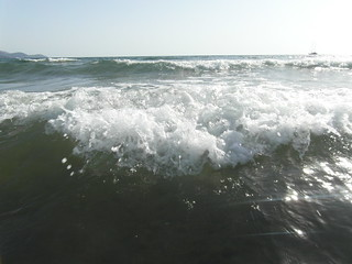 Image of  İztuzu Plajı Iztuzu Beach  near  Dalyan. sea beach turkey coast turtle dalyan turtlebeach iztuzu