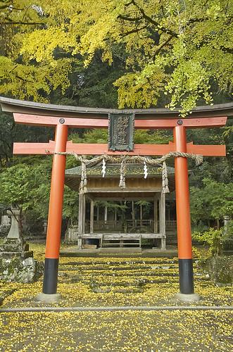 【写真】2013 紅葉 : 岩戸落葉神社(2)/2020-07-30/IMGP3154