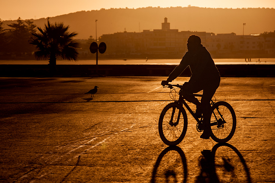 Morning in port of Essaouira