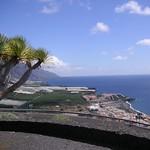 Blick auf Puerto Naos und eingepackte Plantagen