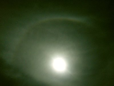 Nature Corner: Halo 'round the Moon (10/29/08)