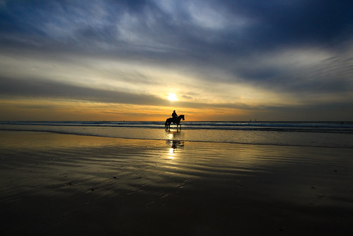 sunset sea sky horse sun reflection clouds reflections landscape seascapes wideangle ultrawideangle sigma1020 goldenhours canon600d cowboyhertzeliabeachisrael