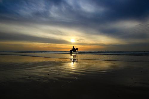 sunset sea sky horse sun reflection clouds reflections landscape seascapes wideangle ultrawideangle sigma1020 goldenhours canon600d cowboyhertzeliabeachisrael