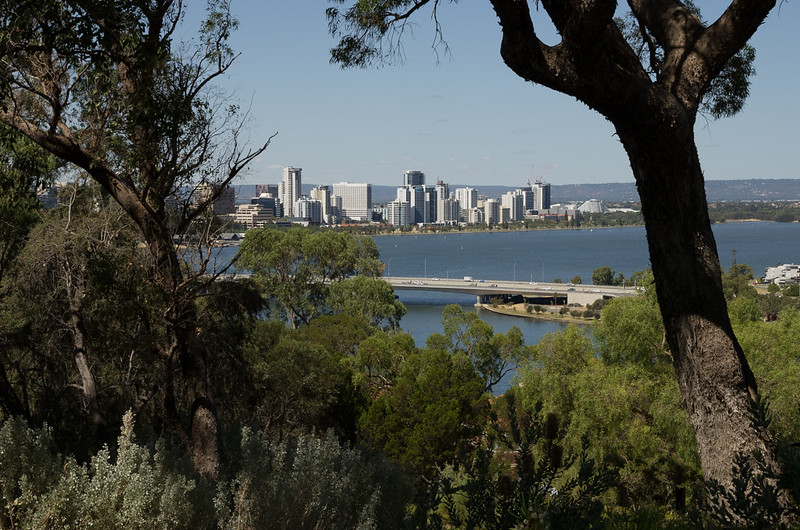 Kings Park overlooking Perth city