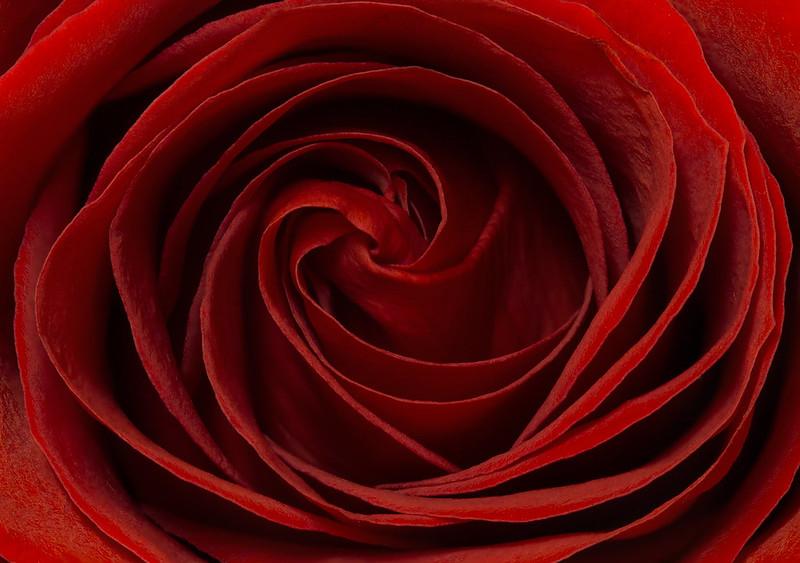 IMAGE: http://farm8.staticflickr.com/7350/12582445583_d3f8f4030d_c.jpg