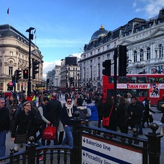 """""""... And the foreign student said to me 'is it really true, there are elephants and lions too in Picadilly Circus?'"""""""