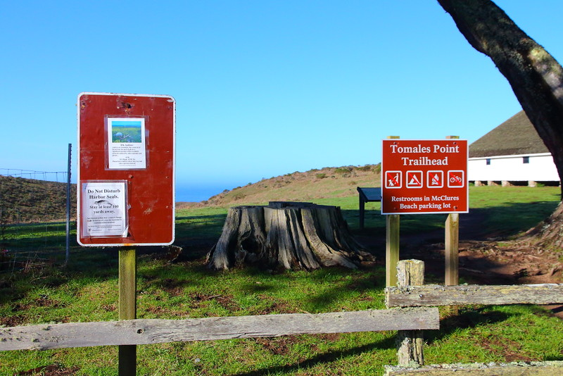 IMG_2702 Tomales Point Trail