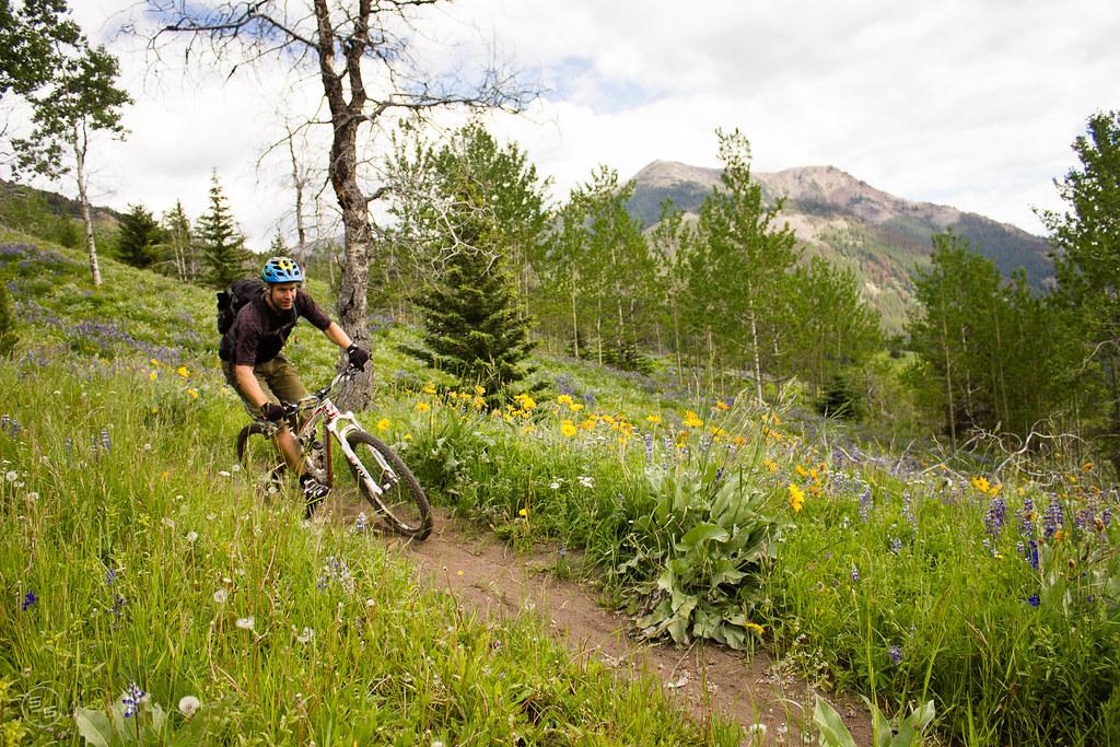 David Reid railing through wildflowers in the Chilcotins