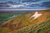 Westbury White Horse by Julian Baird