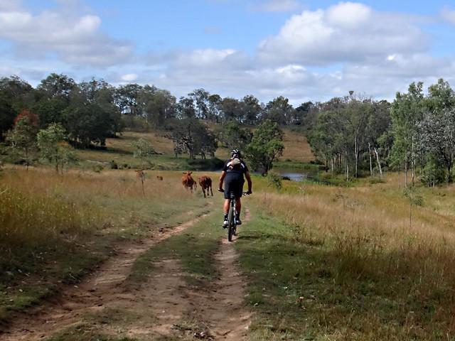 Trails - Milford Rocks