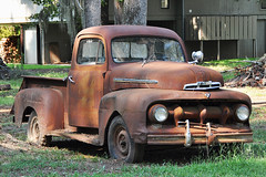 Uncertain - Rusty 1952 Ford Pick Up at Caddo Lake
