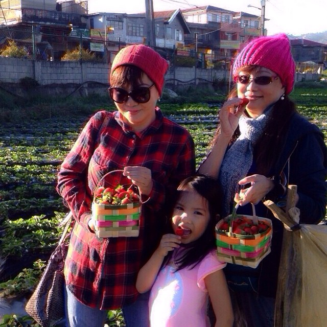 Strawberry Farm wth Asunta