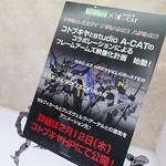 WF2015W_Koto-72